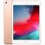 iPad Mini Wi-Fi 64GB Gold 2019 (MUQY2)